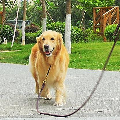 Dog Leash with 2 Handles, 1.9M Long Heavy Duty Handmade Leather Pet Dog Training Lead Leash for Running, Walking, Hiking… 6