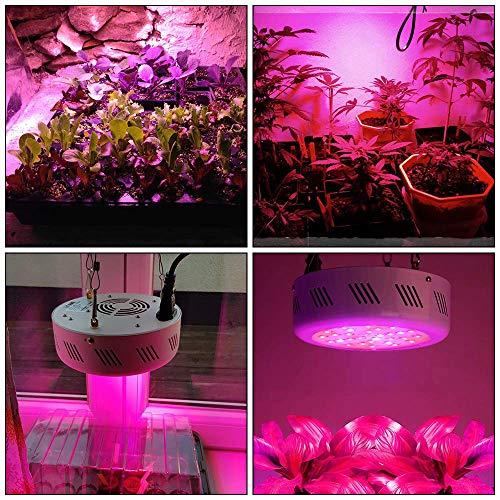 leadro 138w UFO Led Pflanzenlampe Grow mit IR UV Ray für Zimmerpflanzen Wachstum Gewächshaus Licht