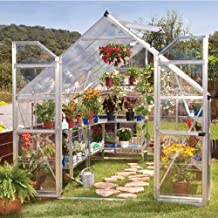 Equilibrio Palram 8x 12pies plata efecto invernadero huecas con paneles de policarbonato y en techo–transparente