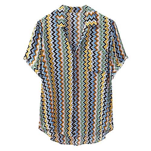 Luckycat Herren Leinen Hemden Beiläufig Langarm Leinen Shirts Strand Hemden Leinenhemd Herren Henley Shirt Herren Freizeithemden Herren Kurzarm & Langarm Hemd Herren Leinen Shirt -