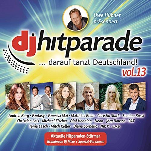 DJ Hitparade, Vol. 13