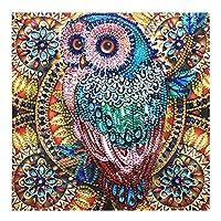 BINGHONG3 Owl 5D Special Shaped Diamond Painting Embroidery Needlework Rhinestone Crystal Cross Craft Stitch Kit DIY