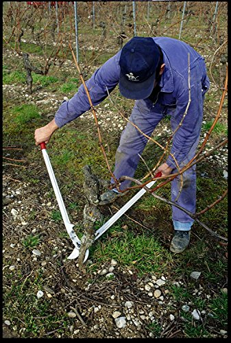 Felco Gartenschere, Astschere Länge 84 cm, Zweihand Baumschere aus Aluminium, Felco 22
