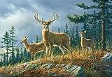 Fototapete AUTUMN WHITE TAILS 366 x 254cm, Wald, Natur, Rehe, Hirsch, Herbst