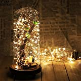 Tomtopp 50 LED 5m String Battery Silver Wire Party Fairy Lights Lamp Decor(white)