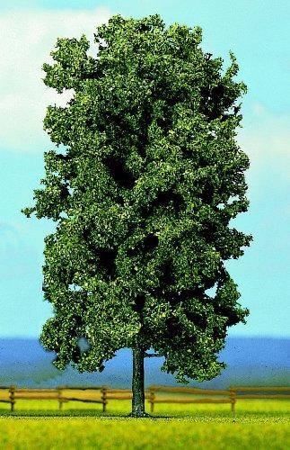 Desconocido Ziterdes 12167 - Bosque mítico, Castaño Importado de Alemania