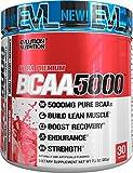 Evlution Nutrition BCAA5000 Powder 5 Grams of Premium BCAAs, 30 Servings (Watermelon)