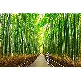 Fotomurales Vinilo Pared Bosque de bambú de Arashiyama cerca de Kyoto, Japón Varias Medidas 100x70 cm | Adhesivo Incluido | Decoracion Habitación, Salon, Oficina, Negocio |Motivos Paisajisticos