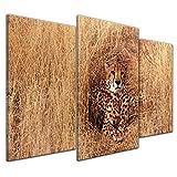 Kunstdruck - Gepard - 100x60 cm 3 teilig - Bilder als Leinwanddruck - Wandbild von Bilderdepot24 - Tierwelten - Katze - Raubtier - Gepard im hohen Gras
