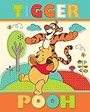 Disney Fleece Decke (120x 150cm Winnie The Pooh/Tigger