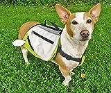 Alcott Explorer Hund Rucksack Hundegeschirr Satteltasche Klein, Grün/Grau, Camping Wandern