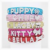 Personalised Dog or Cat Diamanté Fashion Collar - BLING PU Leather(Bling Blue,S)