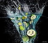 Püree von Graviolafrucht (Stachelannone, Stachelannone), tiefgefroren (6kg Paket mit 60 Portionen...