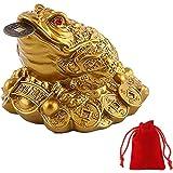 WYMAODAN statuetta a forma di rana con moneta portafortuna in bocca, portatrice di fortuna e ricchezze, decorazione feng shui