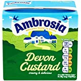 500g Ambrosia Devon natillas