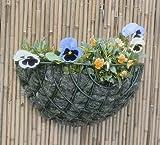 Apollo Gardening Wand-Pflanzkorb Standard Draht–35cm