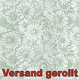 Klebefolie Margarite grün 200x45cm Margeritte Grün Dekofolie Selbstklebefolie Möbelfolie