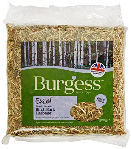 Burgess Excel Birch Bark Feeding Hay 500g (pack of 5) Test