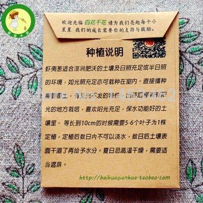 fleurs-bonsai-de-plantes-dintrieur-charnu-lithops-pierre-fleurs-graines-semences-succulent-bonsa-usi