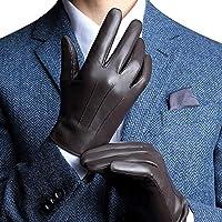 Harrms Herren Winter Handschuhe aus Echtem Leder Touch Screen Gefüttert aus Kaschmir Lederhandschuhe (mit Geschenk Verpackung), 2 Farben