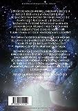 UFOs: Betrachtungen des Phänomens - Markus Bauer