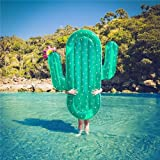 aufblasbarer Schwebebett Pool schwimmen Luftbetten Für Planschbecken Spielzeug Luftmatratzen (Kaktus)