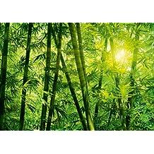 Fototapete urwald  Suchergebnis auf Amazon.de für: fototapete urwald