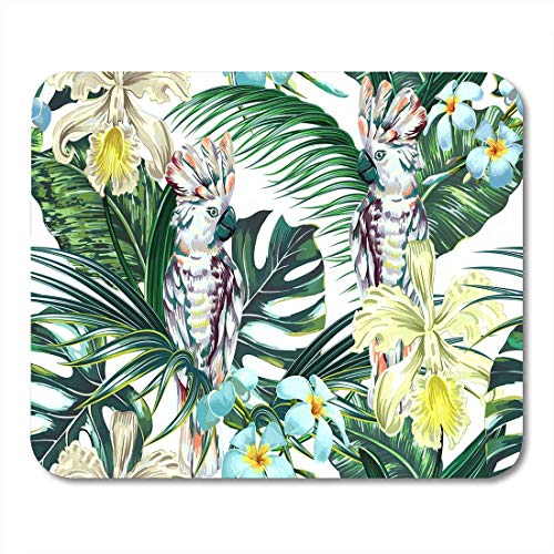 AOHOT Mauspads Tropical Summer Floral Parrots Cockatoo Birds Exotic Flowers Palm Leaves Jungle Leaf Monstera Orchid Mouse Pad Mats 9.5
