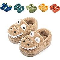 Fadezar Boys Girls Cute Slippers Winter Warm Dinosaur Slippers Slip on Novelty Slippers for Toddler Kids