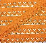 3 m Wäschespitze/elastische Rüsche mit zarter Bogenkante 13 mm (orange)