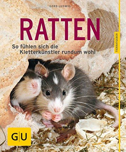 Ratten als Heimtiere, glücklich & gesund gelb 12 x 3,5 cm (GU Tierratgeber)