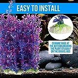 Aquamarine Plastic With Ceramic Base Artificial Aquarium Plant Decoration Ornament Length-7.5 Inch 2 Pcs Color May Vary