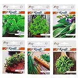 #6: Kraft Seeds Herb Combo Basil (30 Seeds), Oregano (50 Seeds), Thyme (100 Seeds), Sage (50 Seeds), Rocket (10 Seeds), Chives (20 Seeds)