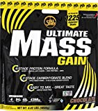 All Stars Mass-Gain, Schoko, 1er Pack (1 x 4000 g)