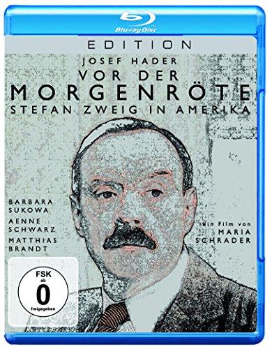 Vor der Morgenröte - Stefan Zweig in Amerika [Blu-ray]