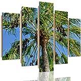 Feeby Cuadro Imagen 5 Partes Naturaleza Deco Panel Palmas Cielo Árbol Verde 200x100 cm