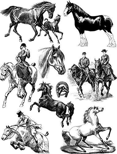 Pferde und Reitsport / Grosse Blatt Klare Stempel 20x25cm