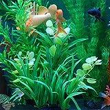 Dontdo Fish Tank artificielle Eau Herbe Plante pour aquarium Simulation Ornaments Waterweeds–MP3/MP4