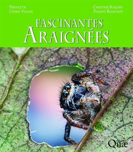 Fascinantes araignées: Préface de Cédric Villani par Philippe Blanchot