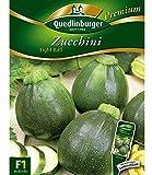 Zucchini 'Eight Ball' F1, 1 Tüte Samen