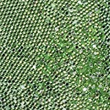 Beauties Factory 20, 000pcs 2mm PRO Rhinestones Crystals Round Beads For Acrylic Nails Gel Nail Art Tips Decoration- LightGreen 10 CODE: #406J
