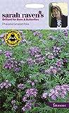 Johnsons - Sarah Raven's Flowers - Phacelia tanacetifolia - 1000 Seeds