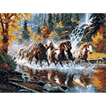 Shukqueen DIY dipinto a olio, adulto, Paint by number Kits, acrilico painting-galloping cavallo in acqua 40,6x 50,8cm, Framed Canvas