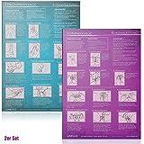 [2er Set] Yoni-Massage und Lingam-Massage: Ideal für die erotische Massage [2 Karten DIN A4 - 2seitig, laminiert] - Yella Cremer