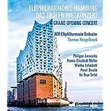 Grand concert d'ouverture de la Philharmonie de l'Elbe à Hambourg. Jaroussky, Müller, Lehmkuhl, Breslik, Terfel, Hengelbrock.
