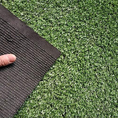 YUER Kunstrasenteppich, gefälschte Gras-Matten-grüne Rasen-natürliche realistische Garten-Rasen-Haustier-Hundematte im Freien (Farbe : 1m, größe : 2mx0.5m)