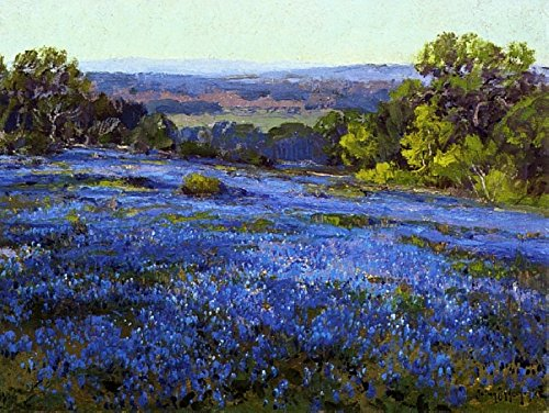 Das Museum Outlet - Bluebonnets, Late Afternoon, North von San Antonio, 1920 - Poster (61 x 81,3 cm)