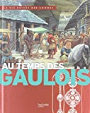 Au temps des Gaulois - Hachette Jeunesse - 17/09/2014