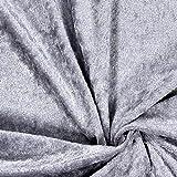 Fabulous Fabrics Pannesamt Silber - Weicher SAMT Stoff zum