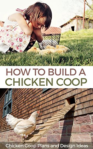 How To Build A Chicken Coop Chicken Coop Plans And Design Ideas
